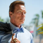 Arnold Schwarzenegger, R20 Founding Chair